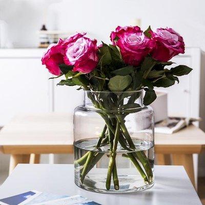 INS風極簡玻璃花瓶家居北歐玫瑰插花透明鮮花水培客廳裝飾品擺件