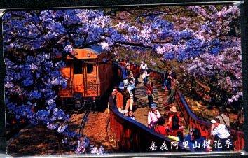 ☆愛蜜麗的收藏世界☆【IC電話卡】嘉義阿里山櫻花季(IC08C002) 1 全
