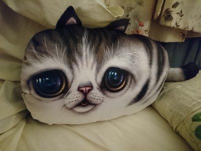 大頭貓  貓抱枕   沙發靠墊 枕頭(全新)