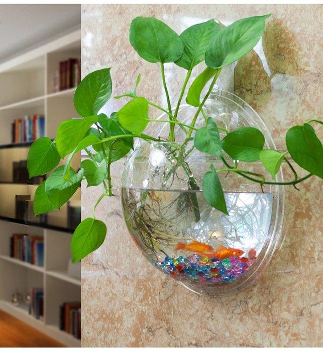 [C.M.平價精品館]新品特價/情趣生活淨化空氣現代簡約壁掛式魚缸/玻璃水培花瓶+彩石、螺絲釘、水草