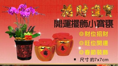 招財寶甕  小米甕  開運黃金色  招財進寶擺飾  花藝設計  居家布置  10個200元
