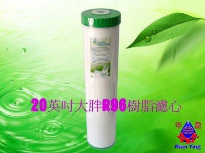【年盈淨水】 20英吋大胖R96 陽離子樹脂濾心 《去除水中碳酸鈣》