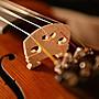 【嘟嘟牛奶糖】全新附發票 霧面虎紋手工小提琴 全實木 頂級黑檀木配件 贈全配+調音器 成人初學