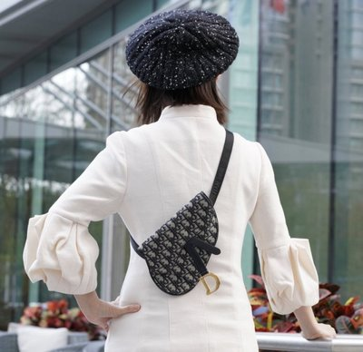 Dior 腰包 限定款 老花配腰帶