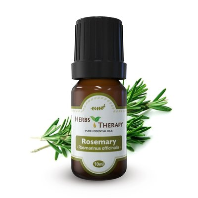 【植物療法】HERBS THERAPY Rosemary  迷迭香精油  10ml x 3= 30ml