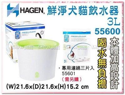 訂購@☆SNOW☆ Hagen赫根鮮淨犬貓飲水器 3L  大容量加高 (80031998