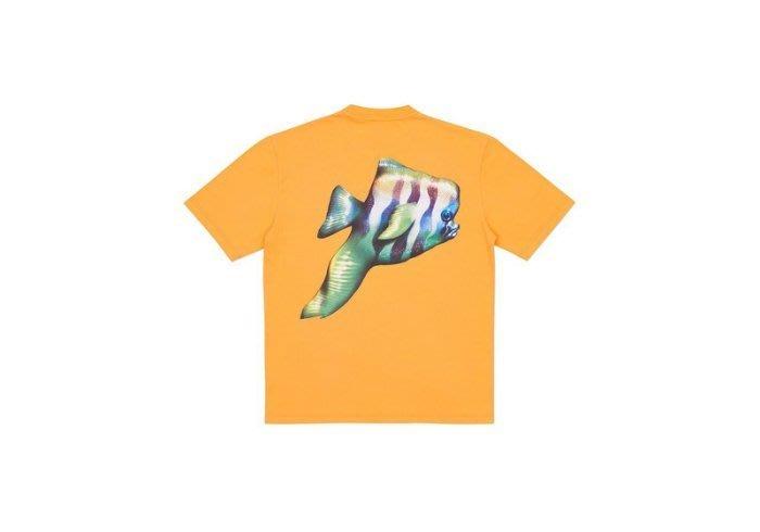 ☆AirRoom☆【現貨】2017SS Palace tropical pish t-shirt 短TEE 橘色 熱帶魚