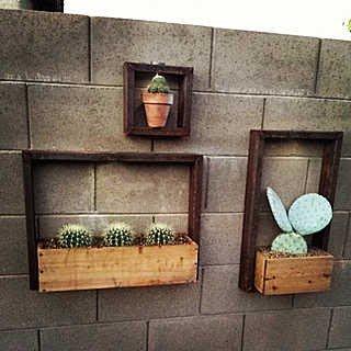 多肉畫框植物相框組合盆栽壁掛牆面綠植花盆園藝工具收納