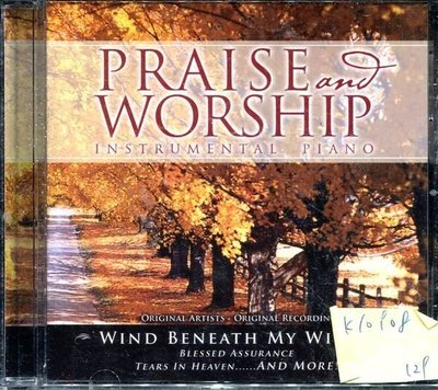 *真音樂* PRAISE WORSHIP / INSTRUMENTAL PIANO 二手 K10908(下標賣1)