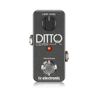 大鼻子樂器  TC Electronic Loop 效果器 Ditto+ loop 預購