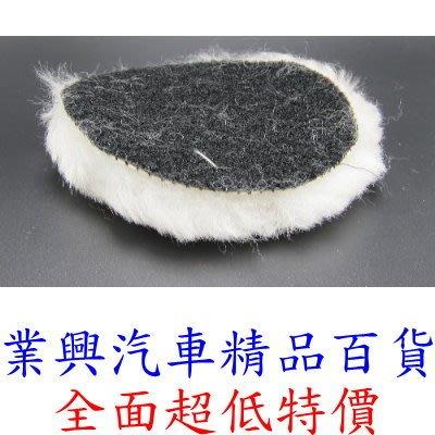 羊毛拋光盤 羊毛輪 海綿輪 海綿盤 羊...