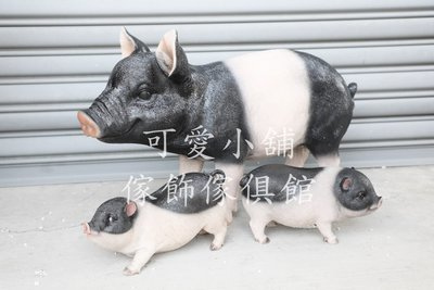 (台中 可愛小舖)可愛動物鄉村風大豬小豬造型擺飾裝飾飾品擺件迷你豬麝香豬黑色膚色波麗娃娃觀光景點農場花海動物園兒童遊樂園