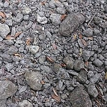 肥料-園藝資材-    (((  本園自用 混合土 )))   -20公升裝  (特價 含運 品)