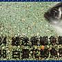【就是愛釣魚】黏巴達 鯽窟 鯽魚餌 釣餌 土鯽魚 日本鯽魚 鯉魚 釣餌 魚餌 釣魚 池釣 溪釣