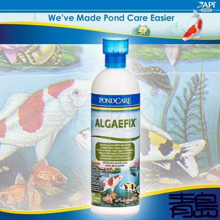 B。。。青島水族。。。D222美國API魚博士-----PONDCARE ALGAEFIX 池塘除藻劑==473ml免運