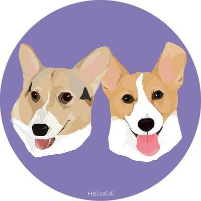 「HELLO DIDI」客製化寵物肖像 代客畫圖 貼紙 禮物 柯基 創意照 獨一無二
