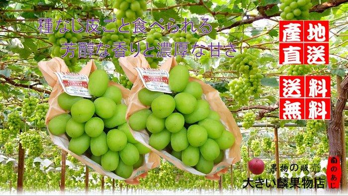※宏麟水果行※產地直送日本長野縣麝香葡萄原裝8房5kg本島免運