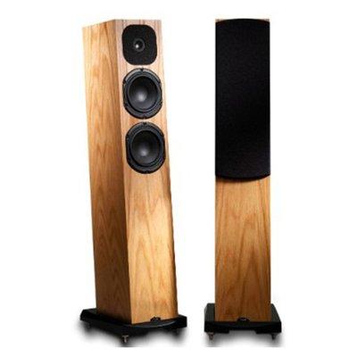 英國 Neat Acoustics Motive SX1 落地式喇叭/對~歡迎來店試聽享優惠 !
