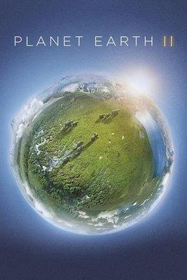 【藍光電影】BD50 地球脈動/行星地球 第二季 2碟 Planet Earth Season 2 2016 110-045|110-046