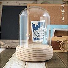 Sweet Garden, 12*高15cm玻璃罩+實木音樂盒底座(可選曲) DIY永生花 陶紙藝設計 公仔模型防塵展示