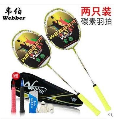 新款碳素超輕耐打男女通用2支羽毛球拍LYH2347