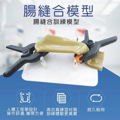 【奇滿來】腸縫合模型+支架夾子/腹腔鏡手術模擬器/練習器械 腸切開縫合手術練習 醫學模擬教學示範用具模型ARHZ