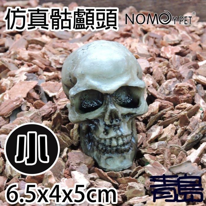 Y。。。青島水族。。。NS-104中國NOMO諾摩-逼真骷髏頭 人頭骨頭 骷顱頭 水族裝飾 躲藏 造景蜘蛛蠍蛇蜥蜴==小