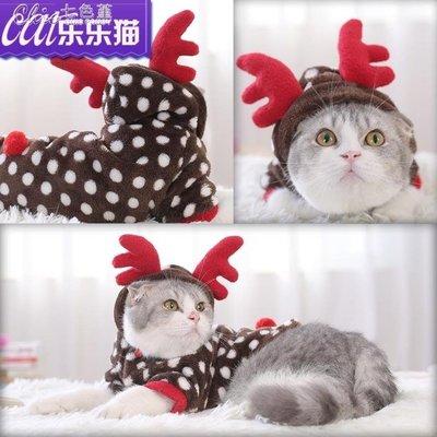 小貓衣服寵物貓咪衣服保暖可愛小奶貓的衣服兔子聖誕幼貓衣服