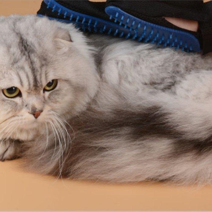 梳毛神器寵物梳去毛刷手套貓用梳子按摩梳貓咪梳(任選1入)_☆找好物FINDGOODS☆