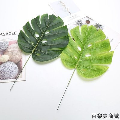 三件起出貨唷 仿真植物墻綠植墻婚慶背景墻插花配材墻面裝飾葉子大號龜背葉單支全店免運中