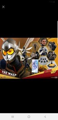 30/6首日訂單 (尾數$1030) hottoys hot toys antman and wasp the wasp MMS498