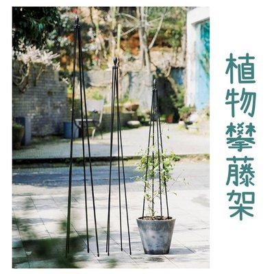 花藝園藝攀藤架 居家花店戶外植物專用鐵製花架子(1.2M)_☆優購好SoGood☆