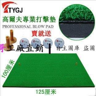【王哥】TTYGJ進口草高爾夫打擊墊 高爾夫練習毯 揮桿墊 室內練習用品