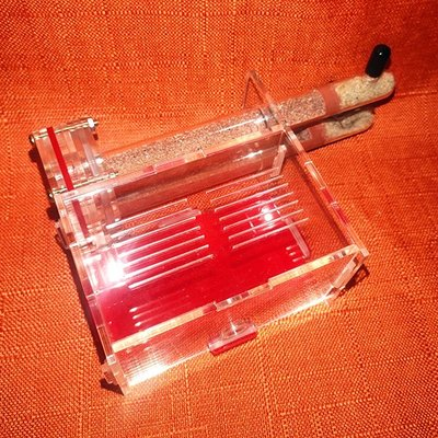 現貨 18mm 雙試管 餵食區 竹節巢 螞蟻飼養 蟻巢 新后巢 試管巢 (生態蟻窩 螞蟻家園 螞蟻工坊)
