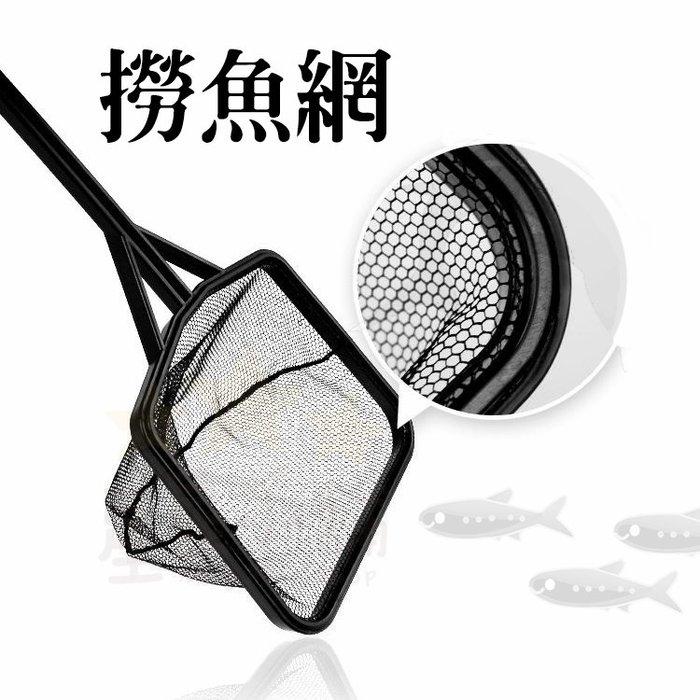台灣出貨 魚網 撈魚 魚缸用品 水族用品 撈網 撈魚網 魚撈