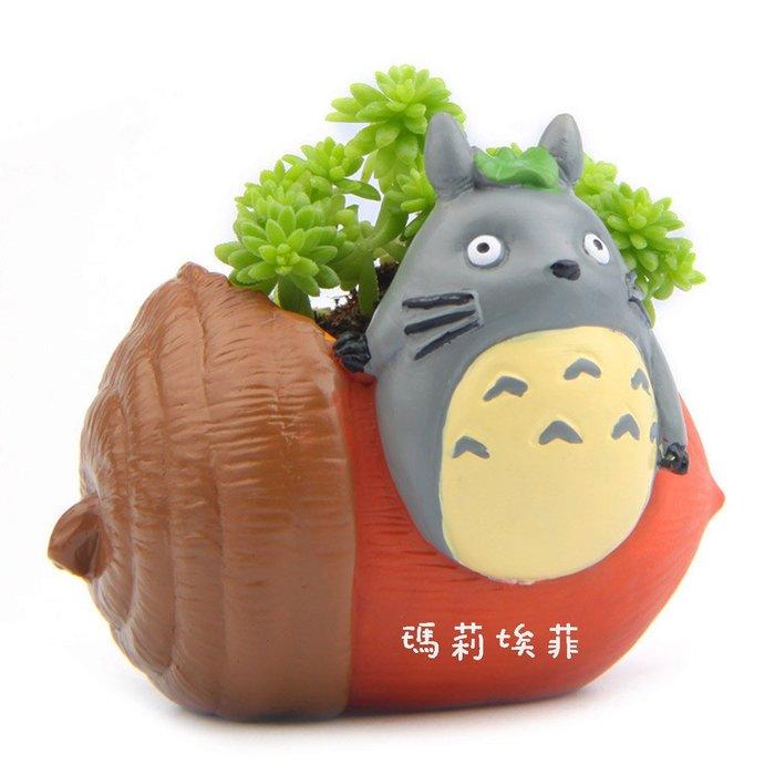 不囉嗦一口價給你!! 宮崎駿龍貓Totoro小巧系列 龍貓橡果粟子花盆 多肉植物 微景觀花盆 ZAKKA拍攝道具