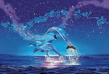 協泰 拼圖-現貨 81-956 夜光效果 星座 星空 海豚 海洋 BEVERLY 1000片