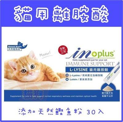 *貓狗大王*IN+plus赢L-LYSINE貓用離胺酸30g(每包1g 內含30包),高純度左旋離胺酸配方,葉黃素添加