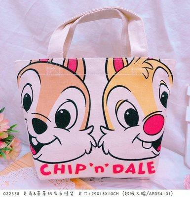 【傳說企業社】日本直送 正版授權 迪士尼 奇奇蒂蒂帆布手提袋 收納袋 置物袋 手提包