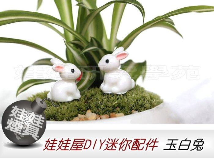 ㊣娃娃研究學苑㊣滿499元免運費 創意DIY 娃娃屋DIY迷你配件 玉白兔  單售價(DIY58)