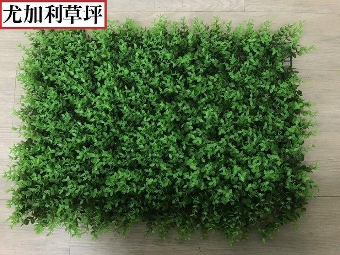 尤加利花草牆 60*40cm 花草牆 仿真植物牆 背景牆 綠化景觀草 假草坪 人造草皮 人造花園 仿真植物