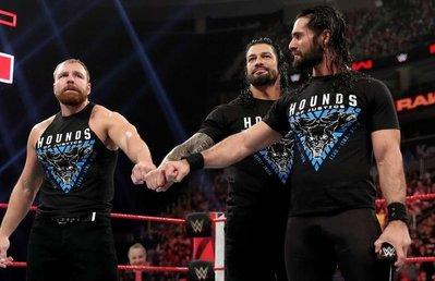 [美國瘋潮]正版WWE The Shield Hounds Of Justice 2019 神盾軍團正義獵犬新版衣服特價