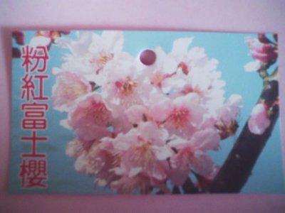 *~*台灣農業園藝*~*櫻花.八重櫻.高120~160公分.20棵西部免運