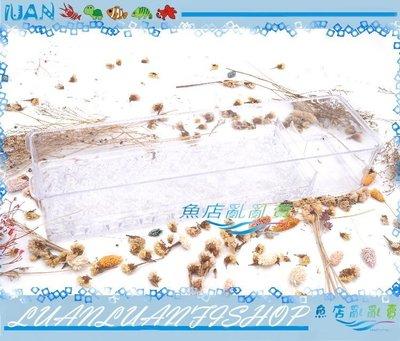 【~魚店亂亂賣~】UP雅柏2尺3層上部過濾三層上部式滴流過濾培菌透明單層槽(替換用過濾槽盒)