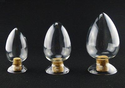 ◇GIDI 儀器◇ 玻璃種子瓶125ml-附軟木塞,實驗室器材 天氣瓶 展示瓶 標本瓶 過濾瓶 試管 比色管 矽膠塞 新竹縣
