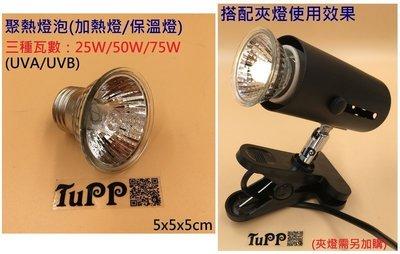 【TuPP雜貨窩 】50W加熱燈 保溫燈 UVA UVB 紫外線 燈泡 兩棲 寵物  E27 110V