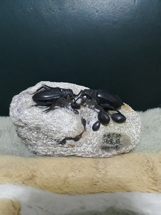 黑甲蟲張愛庭老師2000年冬(黑封門)長12公分寬6公分