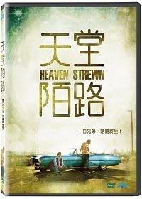 合友唱片 面交 自取 天堂陌路 DVD Heaven Strewn