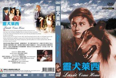 [影音雜貨店] 奧斯卡經典名片DVD - Lassie Come Home 靈犬萊西 - 全新正版