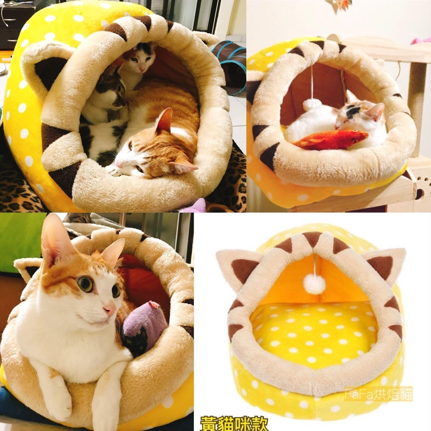 現貨M-拖鞋窩 內墊可拆洗 寵物窩 貓咪造型窩 貝殼窩 貓咪 睡窩 漢堡窩 貓窩 狗窩 貓睡窩 貓屋 貓跳台 船型窩